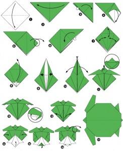 Origami tortue