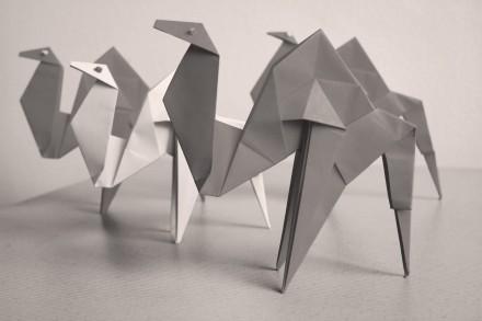 Fond d'écran chameaux origami